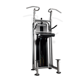Bodytone Weight Assisted Chin-Dip E13