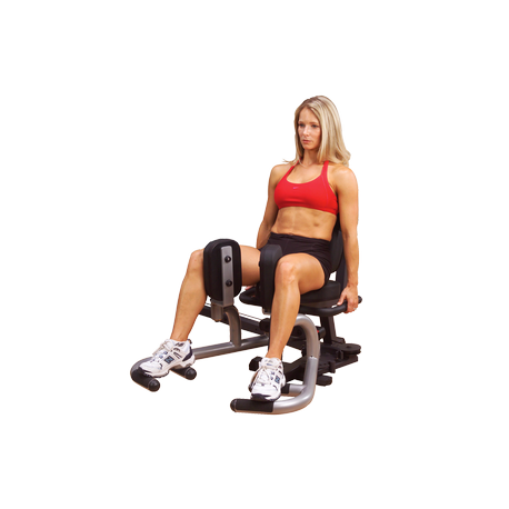 Body-Solid Fusion Weight Assisted Dip & Pull Station FCDWA