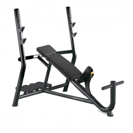 Technogym Element Panca Inclinata (USATO)