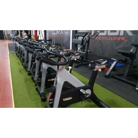 Technogym Group Cycling Bike a Cinghia ( garanzia 6 mesi )